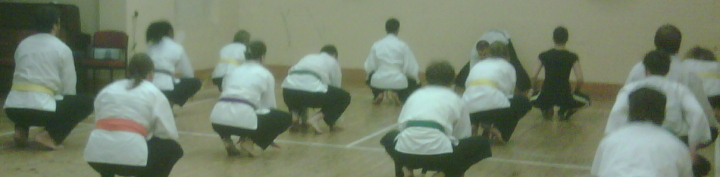 Goyararu Martial Arts